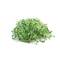 Green Valley Food Corp Broccoli Sandwich Sprouts