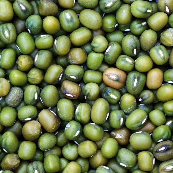 Bulk Commodity Organic Mung Beans