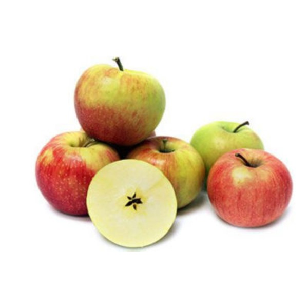 Large Jonagold Apple