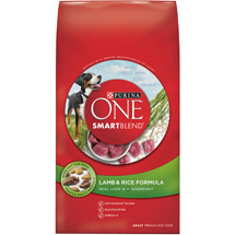 Purina ONE SmartBlend Lamb & Rice Formula Adult Premium Dog Food