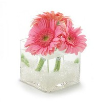 Flowers By Design Standard Gerber Cube