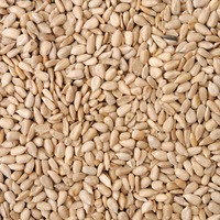 Shelled Sunflower Seeds, Bulk
