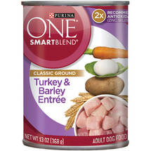 Purina One Wholesome Turkey & Barley Entree Dog Food