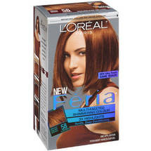 L'Oreal Paris Feria Haircolor Bronze Shimmer 58