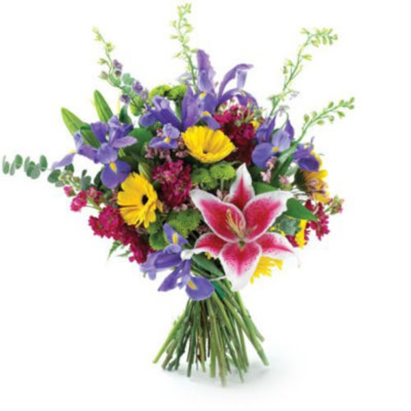 Floral Premium Brilliant Blooms