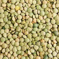 Farmers Direct Coop Organic Large Green Lentils