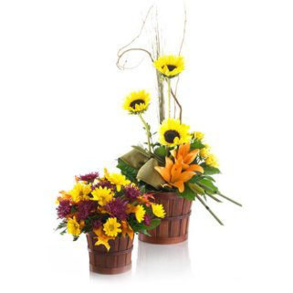 Fall Harvest Arrangement Standard