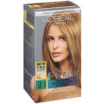 L'Oreal Paris Feria Haircolor #73