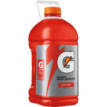 Gatorade Thirst Quencher Fruit Punch Sports Drink 128 Fl Oz