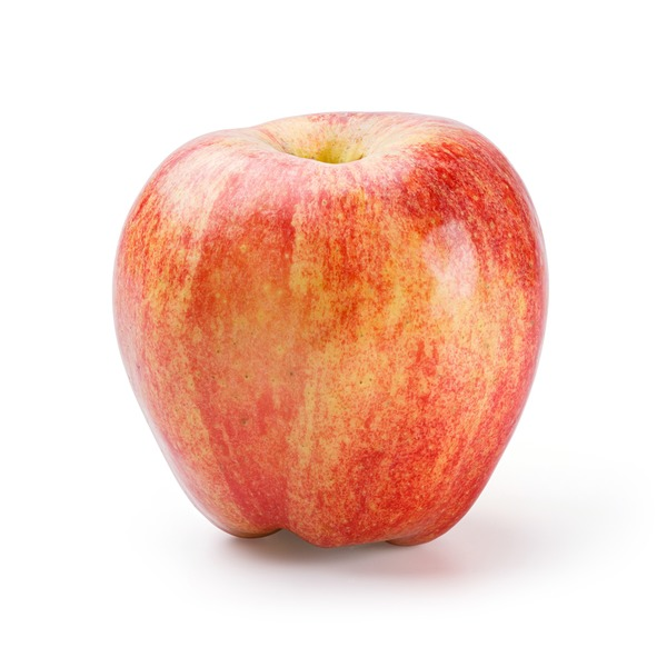 Organic Large Gala Apple