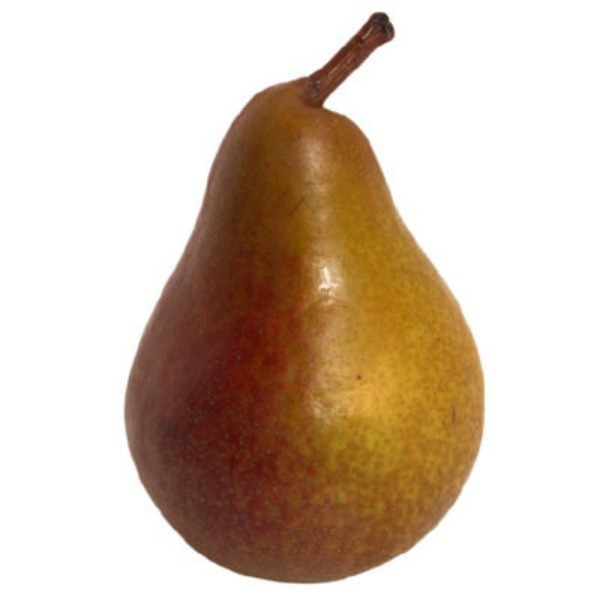 Seckle Pear