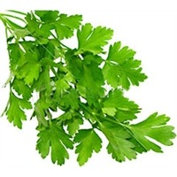 Organic Flat Leaf Parsley, Bunch