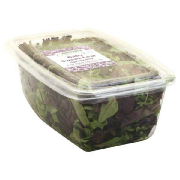 Central Market Baby Sweet Leaf Spring Mix