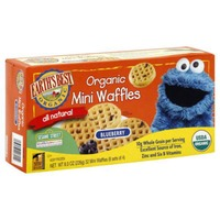 Earth's Best Organic All Natural Blueberry Mini Waffles