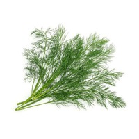 Party's Perfect Portions Dill