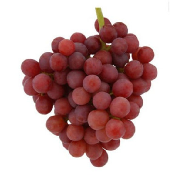 Fresh Fresh Extra Large Holiday Red Seedless Grapes