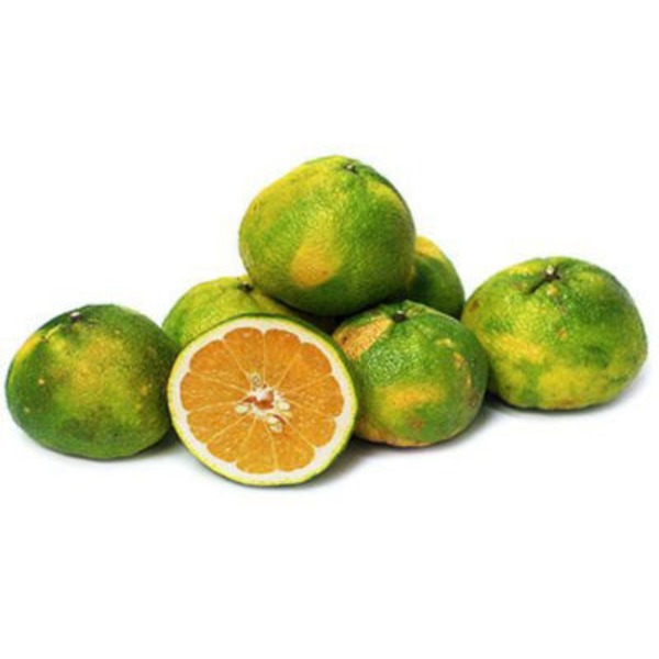 Fresh Ugli Fruit