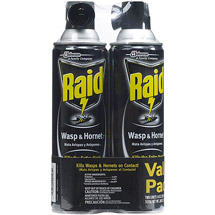 Raid Wasp & Hornet Killer Spray