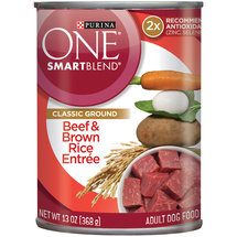 Purina One Wholesome Beef & Brown Rice Entree Dog Food
