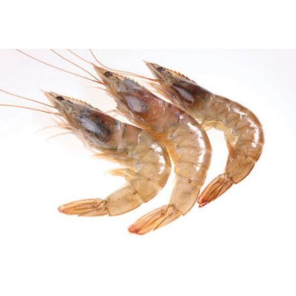 Fish Market Wild Gulf Shrimp