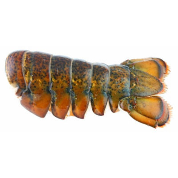 Canadian Lobster Tail