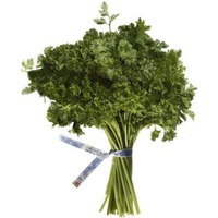 Curly Parsley Bunch