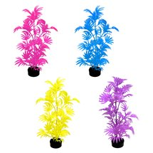 Aqua Culture Wild Flower Aquarium Plant