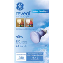 GE Indoor Reflector Reveal Bulb R20