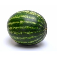 Small/Mini Seedless Watermelon
