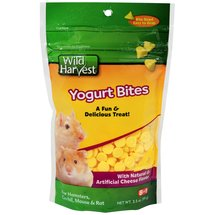Wild Harvest Yogurt Bites for Hamsters Gerbils Mouse and Rat Cheese Flavor