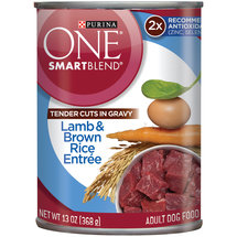 Purina ONE SmartBlend Wet Premium Dog Food Tender Cuts in Gravy Lamb and Brown Rice Entrée