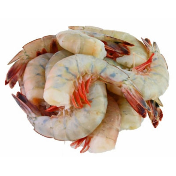 Jumbo U 15 Fresh White Shrimp