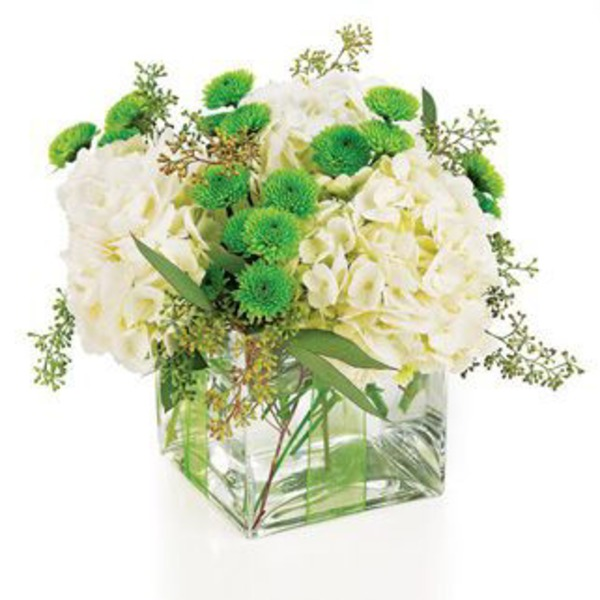 Flowers By Design Standard Classic Cube Collection