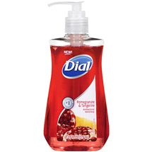 Dial Pomegranate & Tangerine Hand Soap