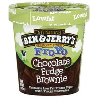 Ben & Jerry's Chocolate Fudge Brownie Greek Frozen Yogurt