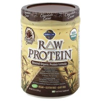 Garden of Life Raw Protein Chocolate Cacao