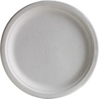 Classic White Dinner 10.375 in Paper Plates