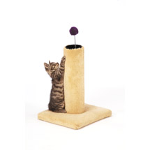 Carpet Scratching Post Blue