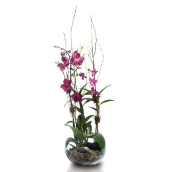 Floral Glass Garden Planter