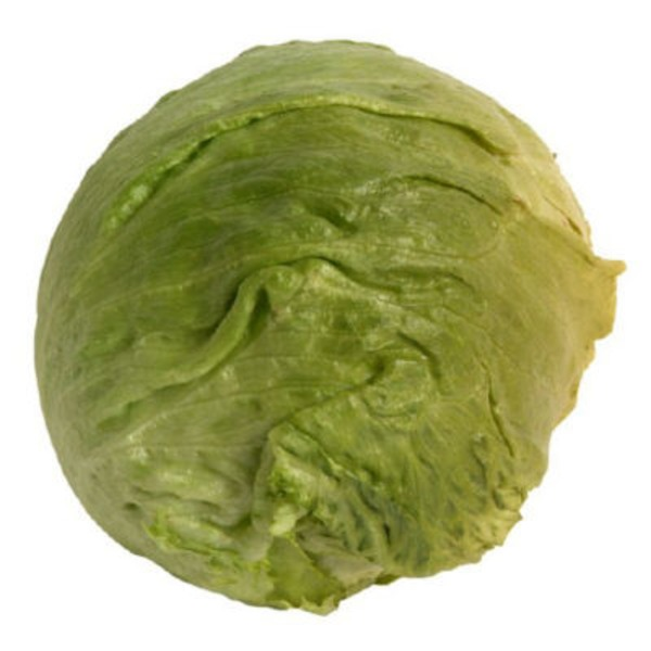 Head Lettuce Cello
