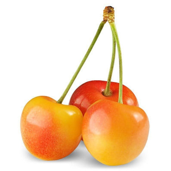 Organic Rainier Cherries