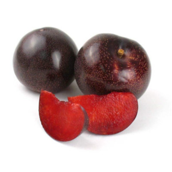 Produce Red Plumcots
