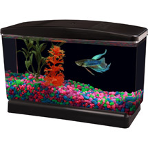 Aqua Culture BettaView Aquarium .5 Gallon