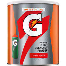 Gatorade Thirst Quencher Fruit Punch Sports Drink Mix