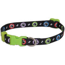 Aspen Pet Adjustable Dog Collar Paws Print (Medium)