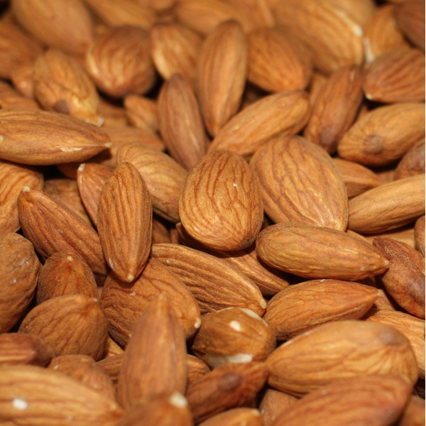 Bulk Commodity Organic Raw Almonds