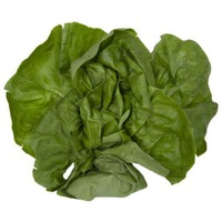 Produce Boston / Butter Lettuce