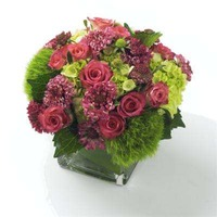 Tootsie Arrangement $25.00