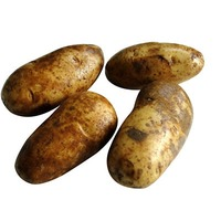 Prepackaged Russet Potatoes