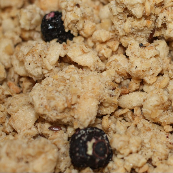 Golden Temple Bakery Wild Blueberry Flax Granola
